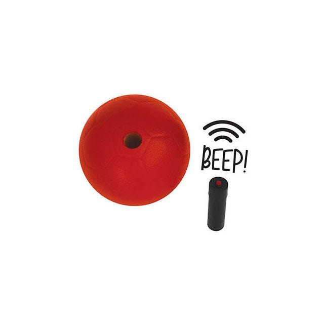 The Zone™Beeper Ball