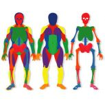 Poly Body Puzzles