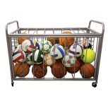 The Zone™ Ball Cart™