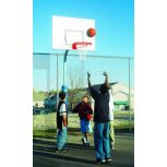 Bison Perpetual Basketball System