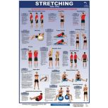 Stretching Posters